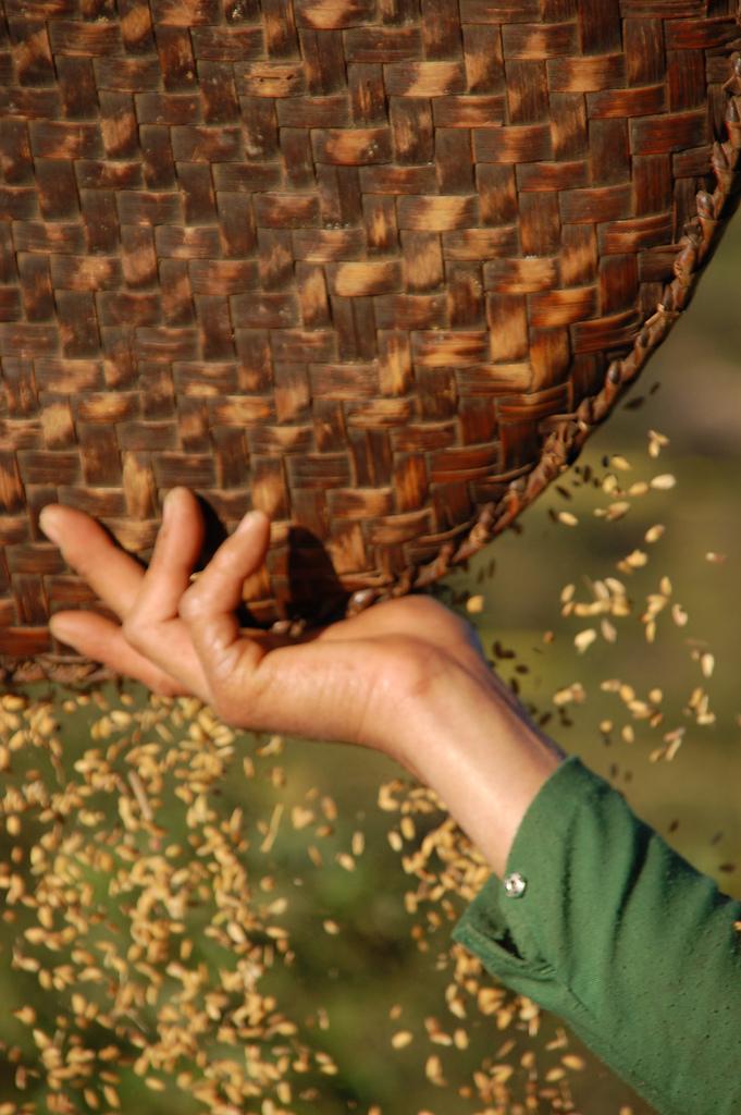 mujer nepalí distribuye semillas